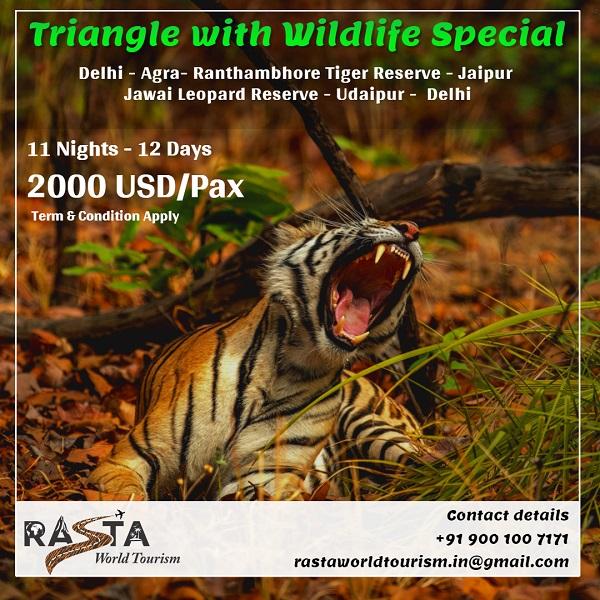 wildlife-special
